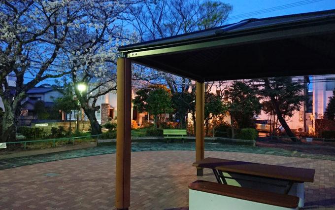 鷹匠公園と桜