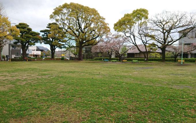 西草深公園の芝生グラウンド