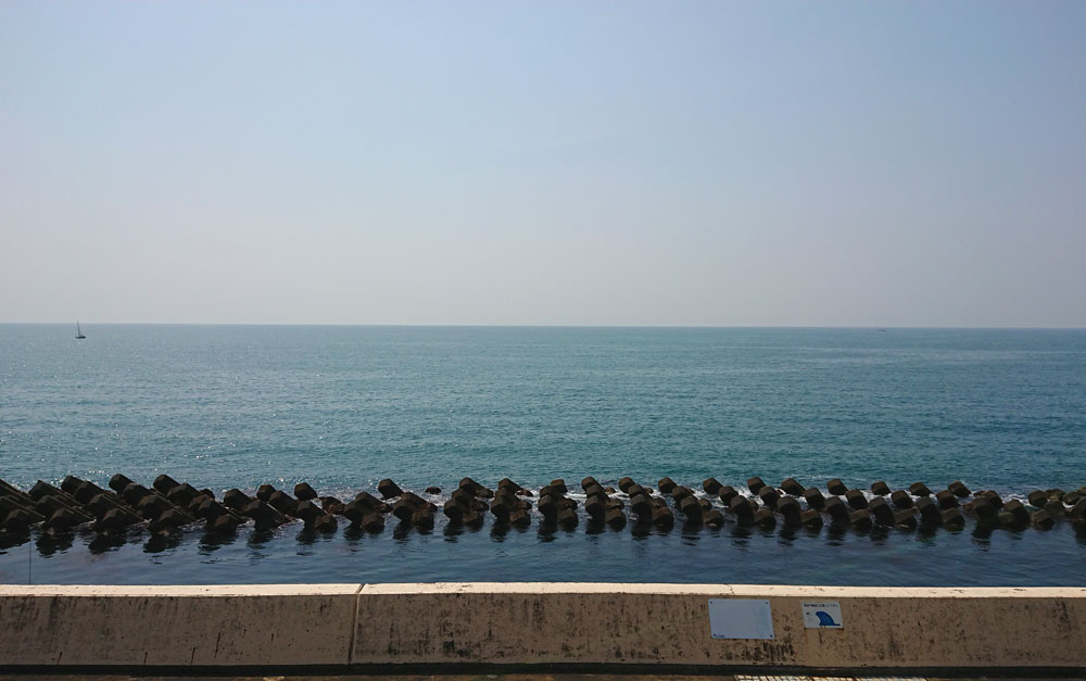 広野海岸公園の釣り
