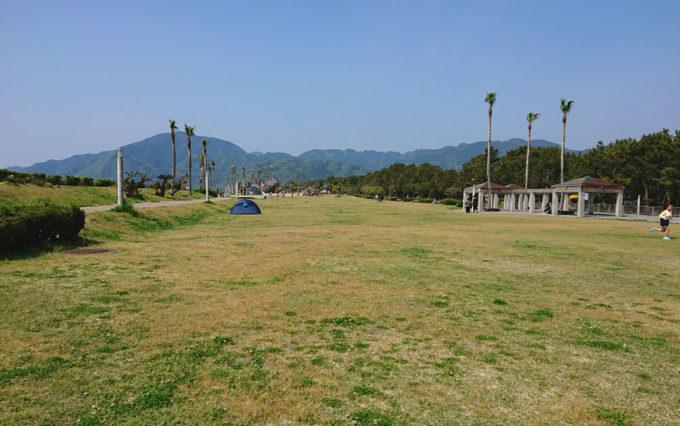 広野海岸公園の芝生広場