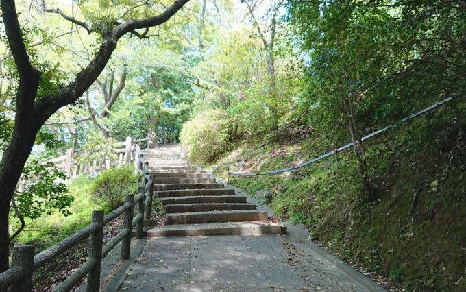 清水山公園の山道