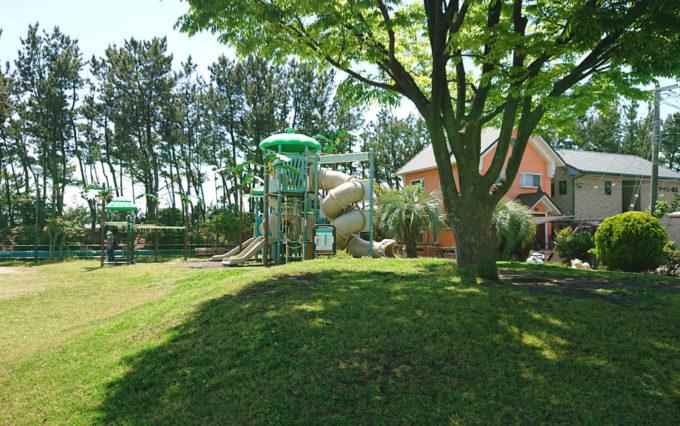 高松南公園の芝生広場