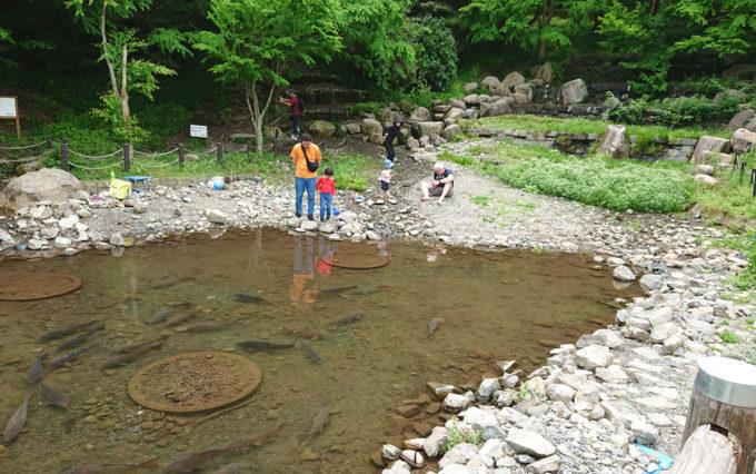 清水日本平公園の水遊び