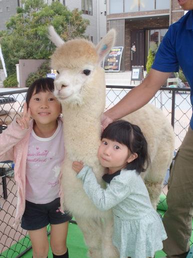 静岡県立美術館のアルパカイベント